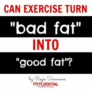 exercise and fat