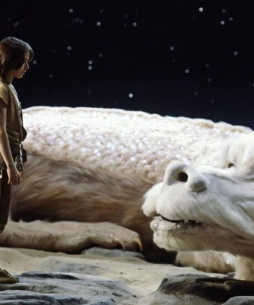 stregatto animali brutti film cinema mogwai gremlins chewbecca ewok wookiee sir didymus labyrinth fortunadrago falkor la storia infinita