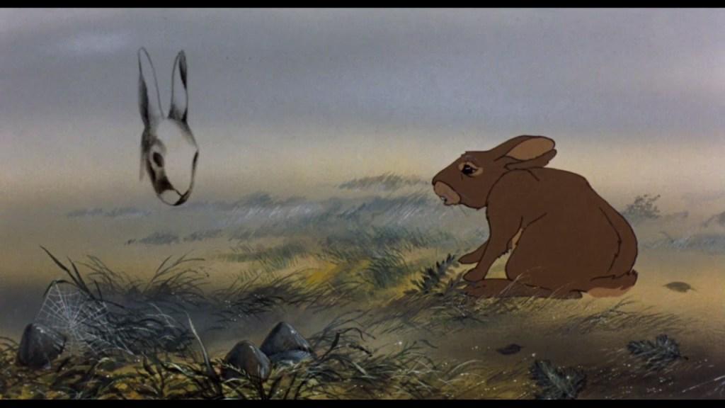 il coniglio nero della morte