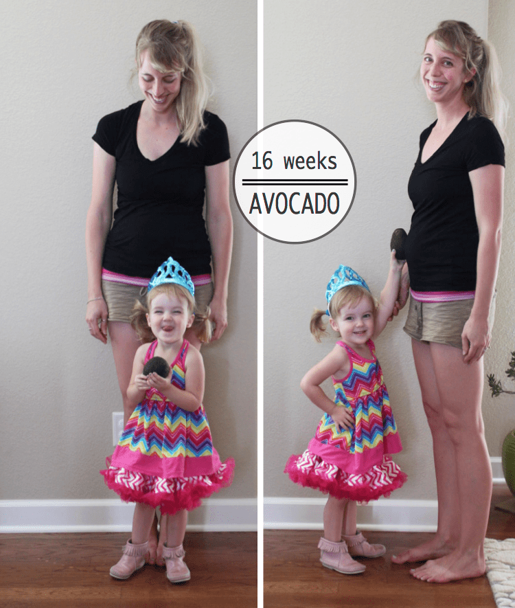 BABY BUMP : MONTHS 2 3 4 5 – the MAD creative
