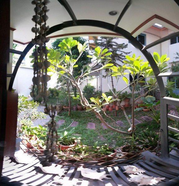 bangkok-backyard-2