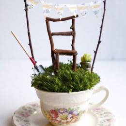 A Fairy Garden in a Tea Cup.