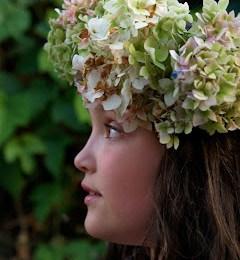 My Hydrangea Flower Fairy