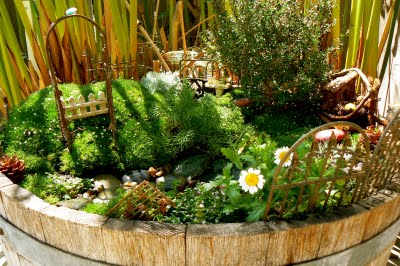 Magical Fairy Garden