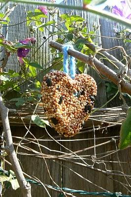 birdseed feeders cakes