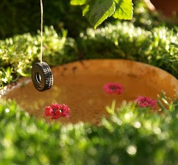 Make a Tire Swing :: Fairy Gardens :: 2013