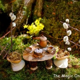 Fairy Garden Feature :: 2013 :: Ten