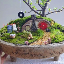 Finalists :: Fairy Garden Contest :: 2013