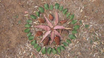 Leaf Mandala : www.theMagicOnions.com