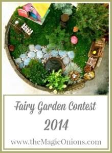 Fairy Garden Contest : www.theMagicOnions.com
