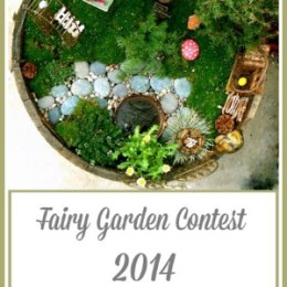 Fairy Garden Contest :: 2014 :: Enter Here!