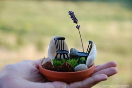 Mini Fairy Garden : Fairy Garden Contest : www.theMagicOnions.com