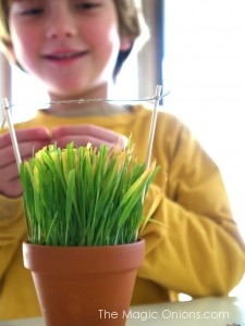 Spring : Magic Craft Box : www.theMagicOnions.com Blog