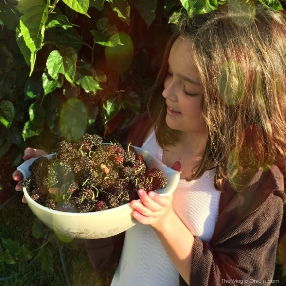 photo of us picking mulberries