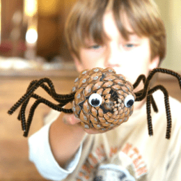 Pine Cone Halloween Crafts