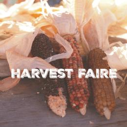 A Waldorf Harvest Faire