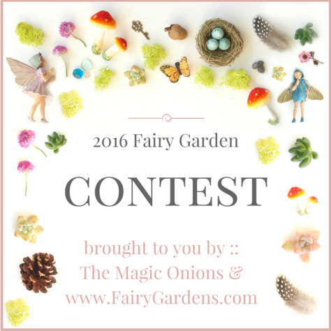 Fairy Garden Contest 2016 :: The Magic Onions :: www.FairyGardens.com