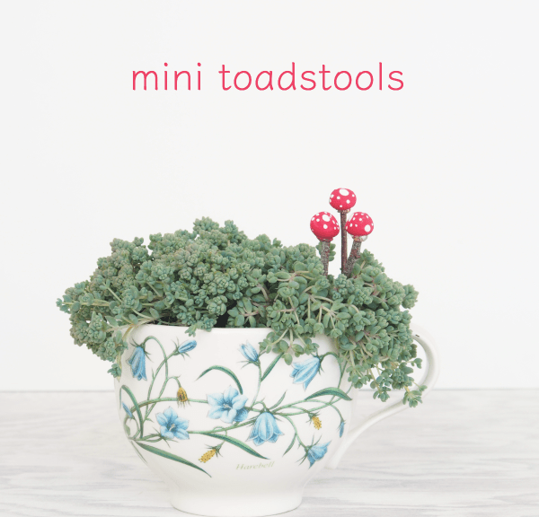 How To Make Mini Toadstools for your Fairy Garden :: DIY Tutorial :: www.theMagicOnions.com