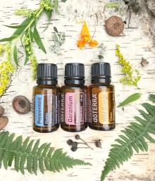 Essential Oil :: Peppermint, Geranium, Wild Orange