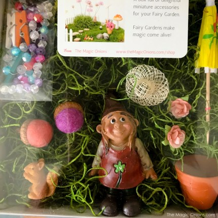 Fairy Garden Kit from The Magic Onoins - www.theMagicOnions.com