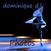 logo dominique dubarry loison photo