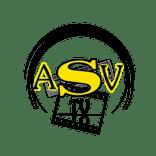 logo ASVTV villebon