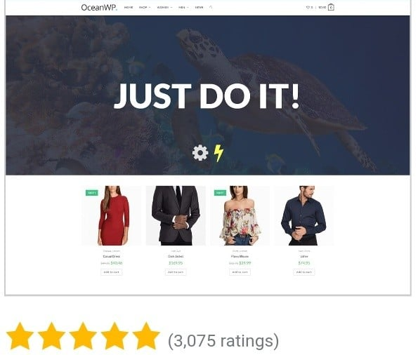 An image that displays ocean Wp theme as one of the best free WordPress theme in 2020