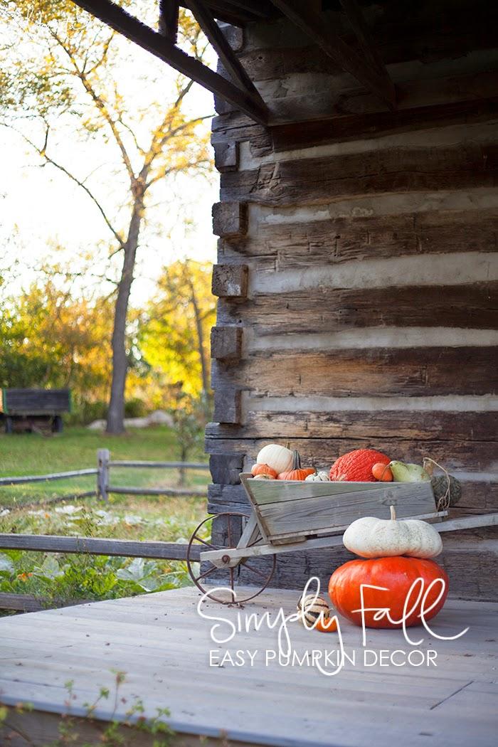 Simple Cabin Decor