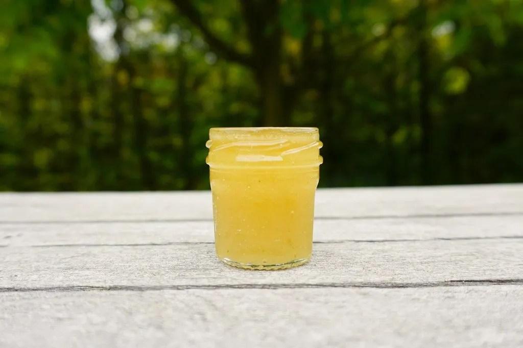 Easy lip scrub recipe with honey - super moisturizing The Makeup Dummy