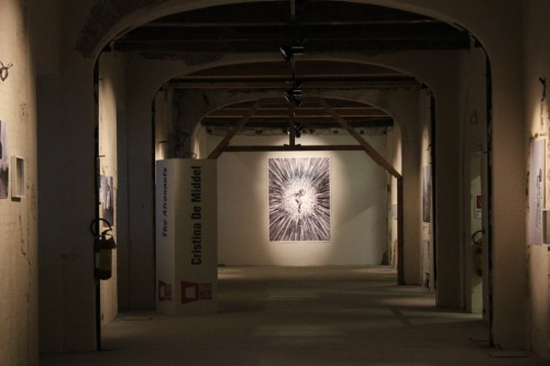 L'esposizione ai Chiostri San Pietro a Reggio Emilia