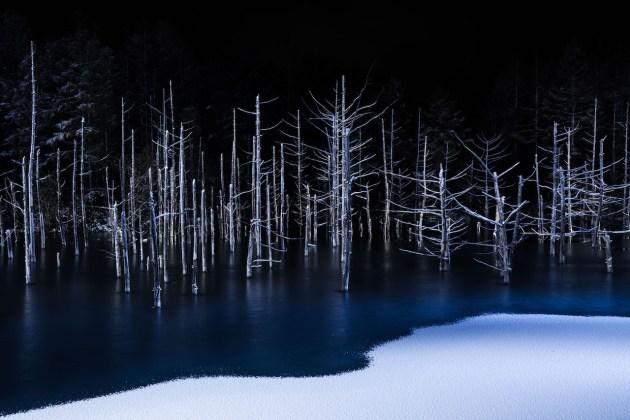 © Hiroshi Tanita, Japan, 1st Place, Open, Nature, 2017 Sony World Photography Awards