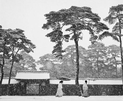 Werner Bischof, Meiji shrine, Tokyo, Japan, 1951, Baryta Print, 60 x 80 cm, Edition: open edition, Werner Bischof Estate / Magnum Photos / Bildhalle