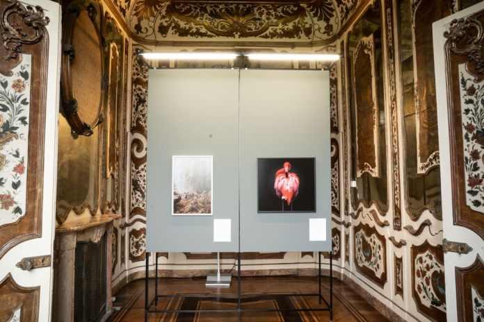 mostra a Villa Reale di Monza