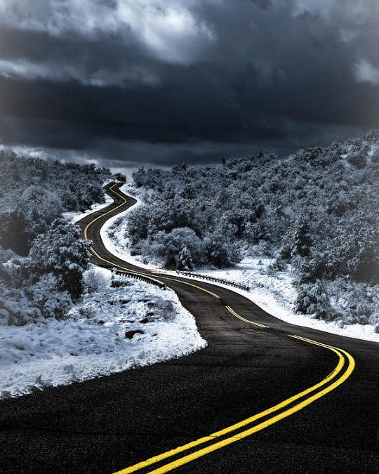 winding road through the snow