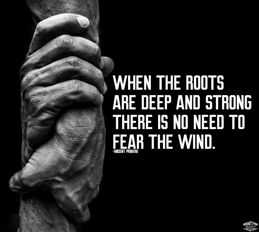 when the roots are deep and strong there is no need to fear the wind