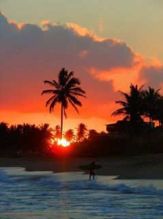 surfing till sundown