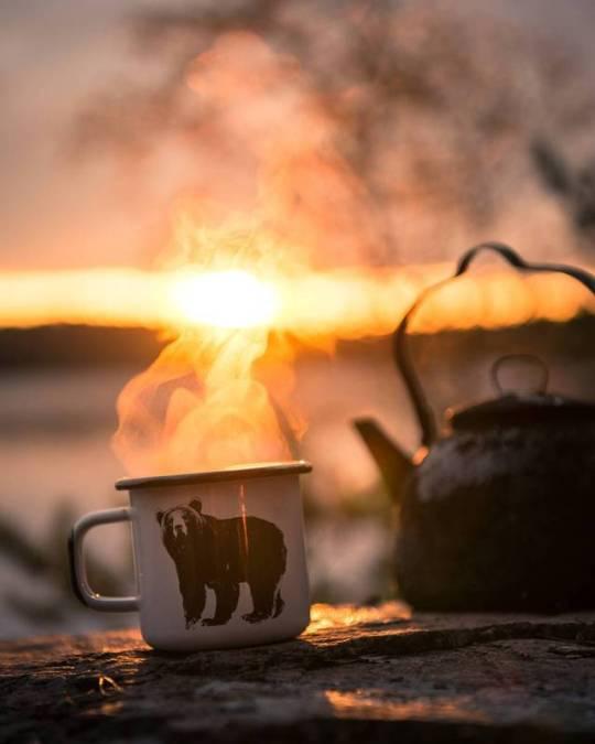 bear coffee mug and sunrise