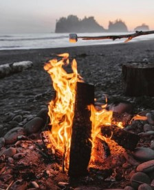 roasting marshmallows with campfire on beach