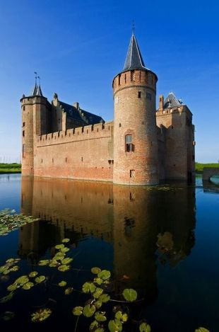 castle surrounded by water