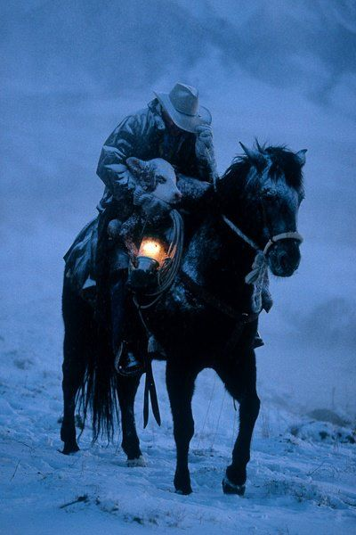 cowboy rescue in snow