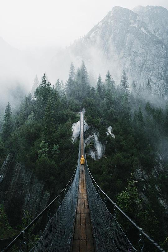pnw foot bridge