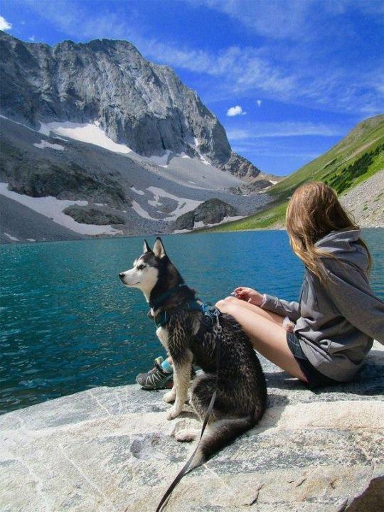 girl with husky near mountain lake