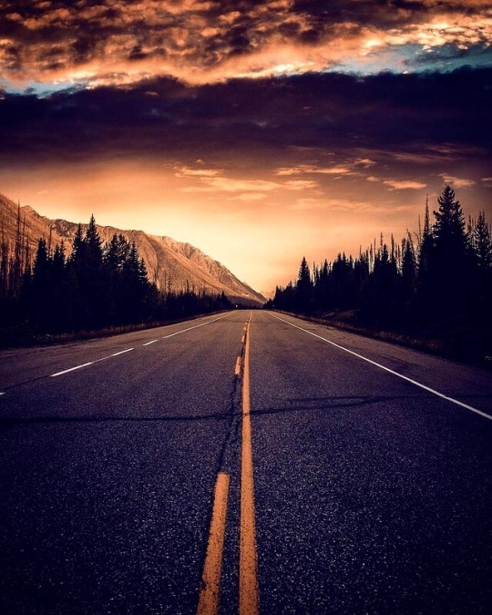 stunning sunset road