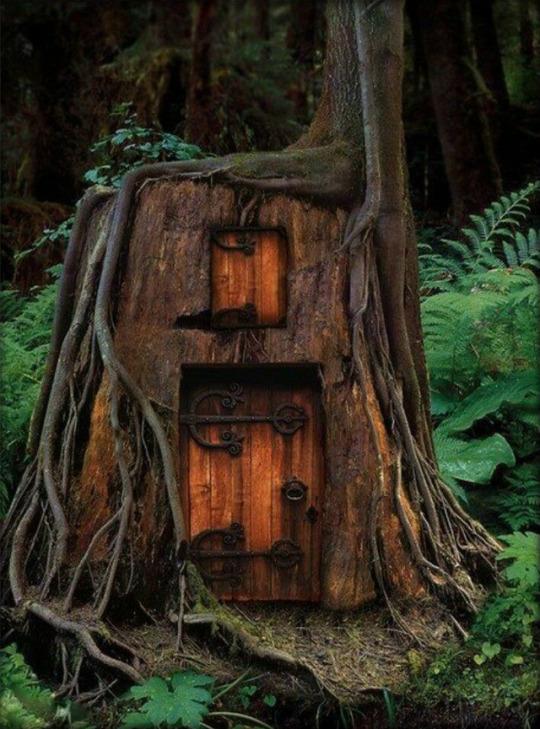 hobit house in tree