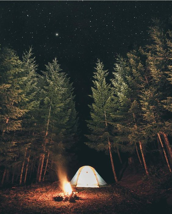 tent and campfire at night