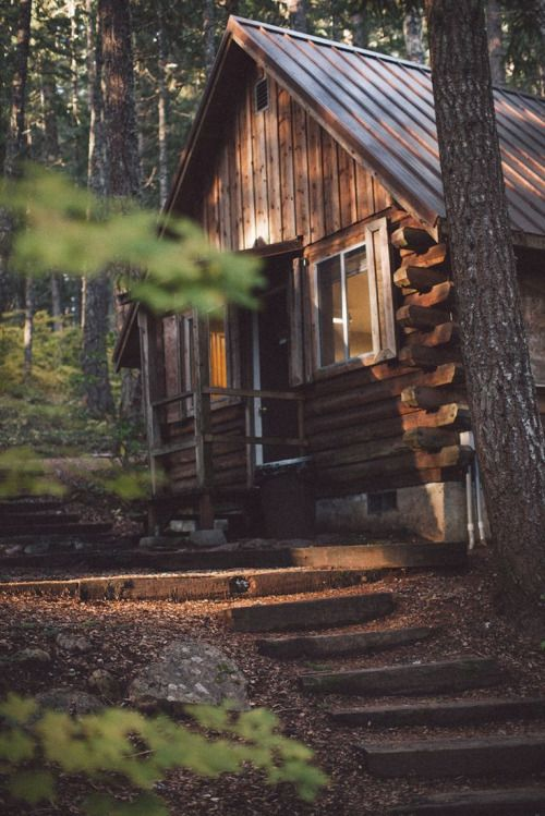 hidden cabin