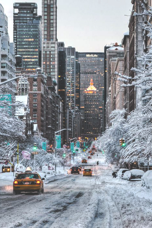 snowy city