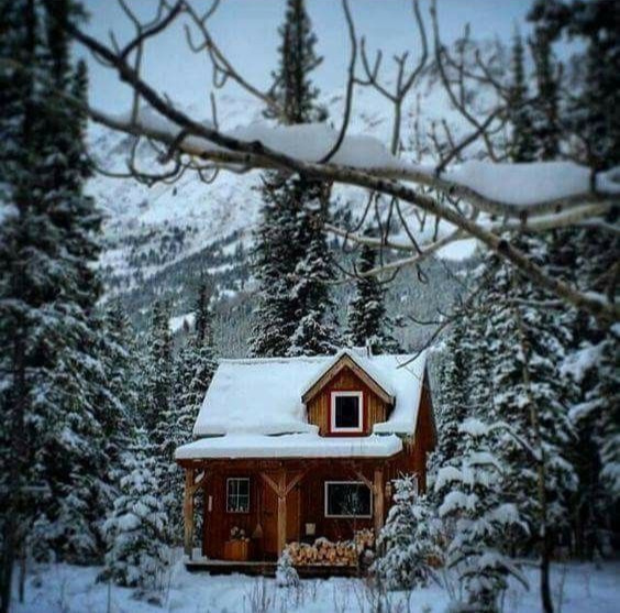 a secluded cabin in the snow