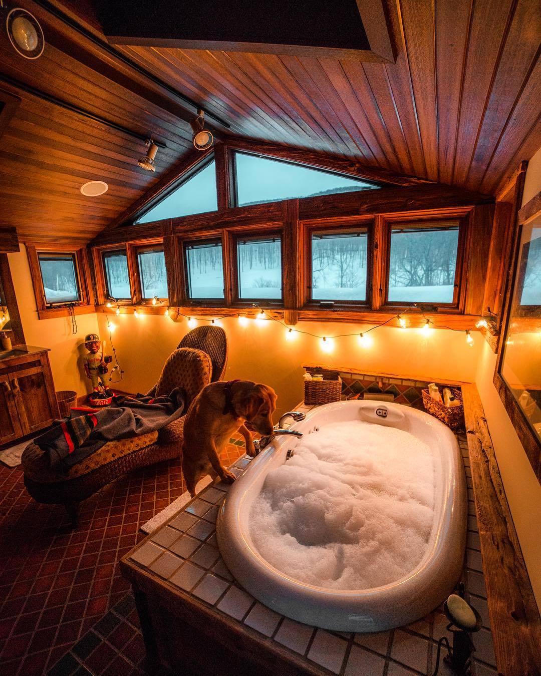 doggo wants a bath