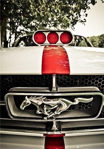 iconic ford mustang emblem